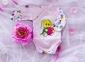 Бодик -Слоник  розовый